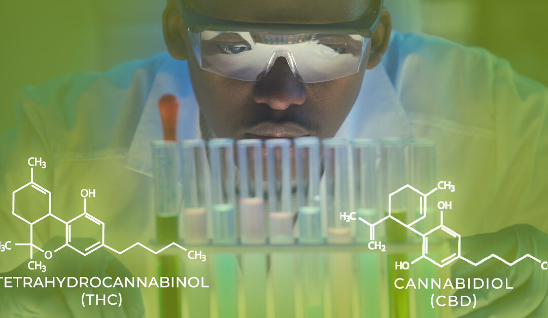 Your Marijuana Testing Lab Can Accept Credit and Debit Cards