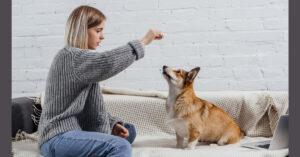 woman feeding a dog a CBD treat